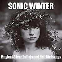 Magical Silver Bullets and Hell Birdsongs - Sonic Winter